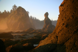 Point of the Arches at sunrise, Olympic National Park