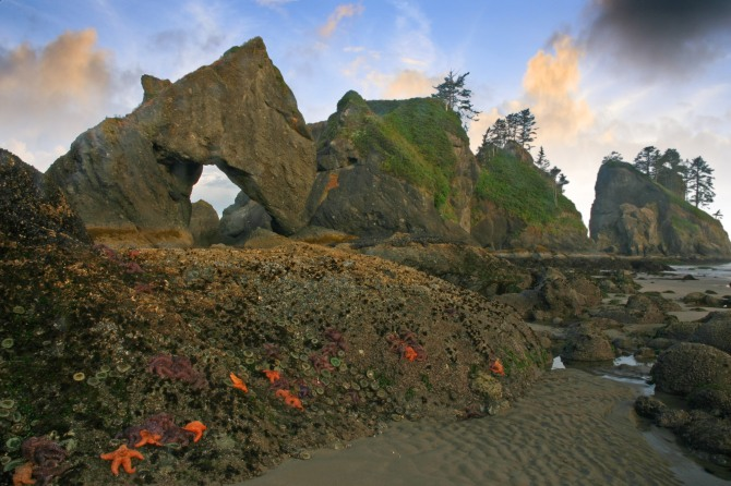 Point of the Arches, Olympic Wilderness