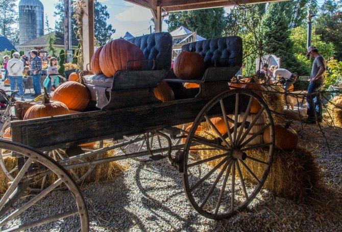 pumpkins 10em