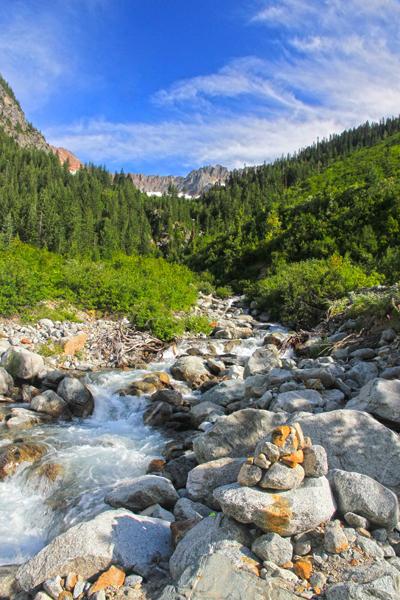 Basin Creek 2