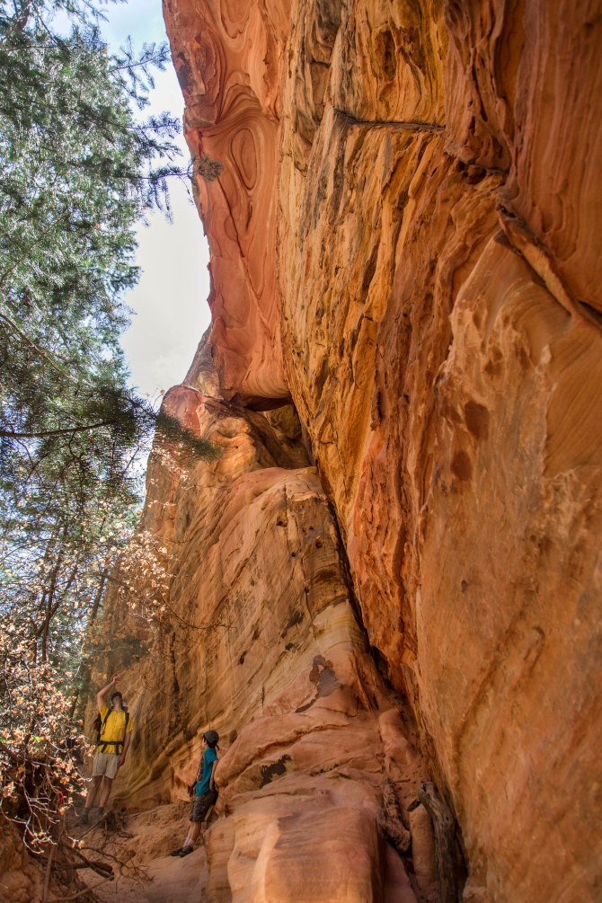 Hidden Canyon, Zion National Park