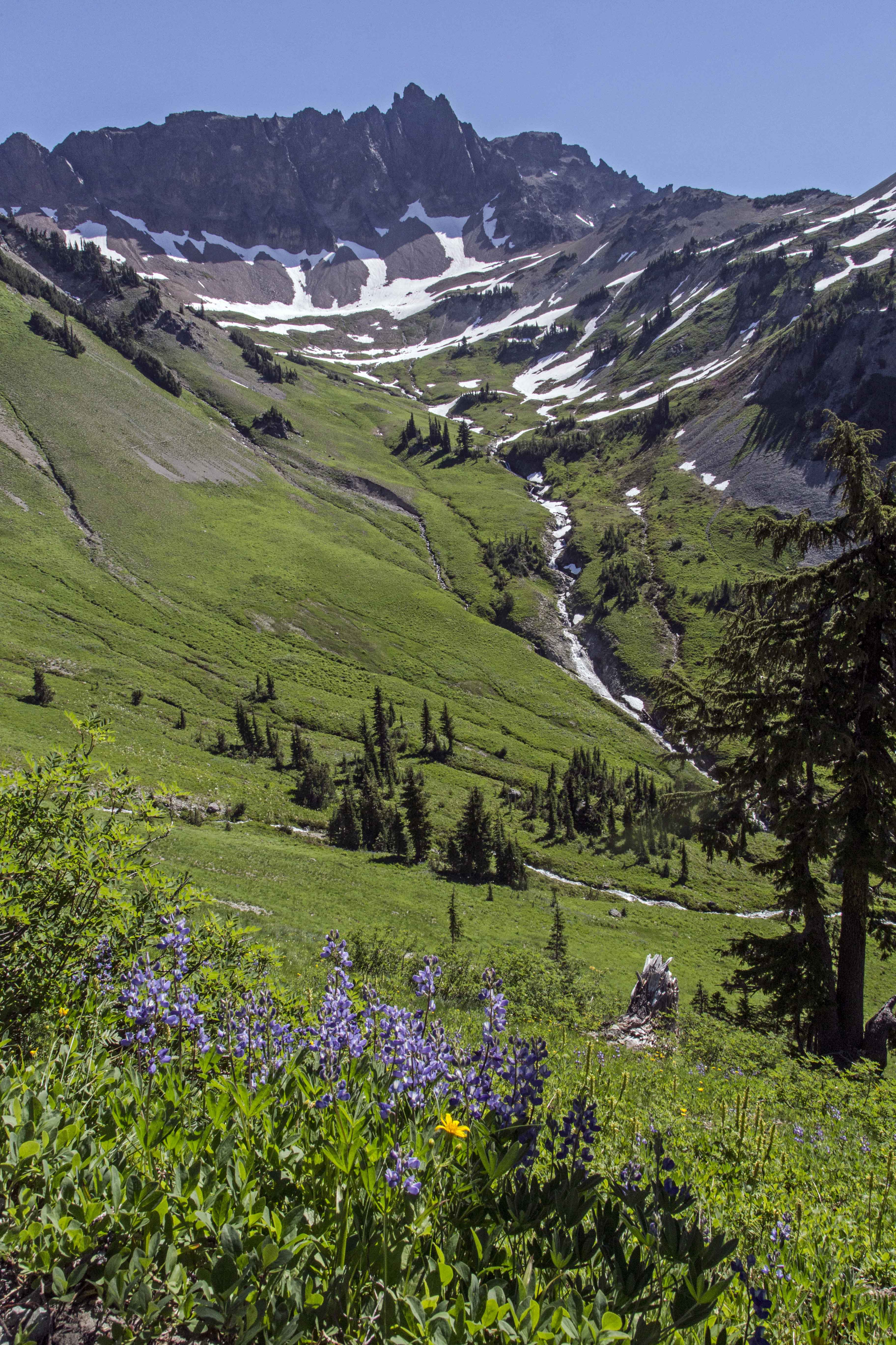 Goat Rocks Wilderness Washington State North Western