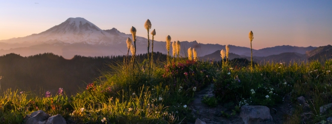 Mount Rainier and Beargrass from the Lily Basin Trail