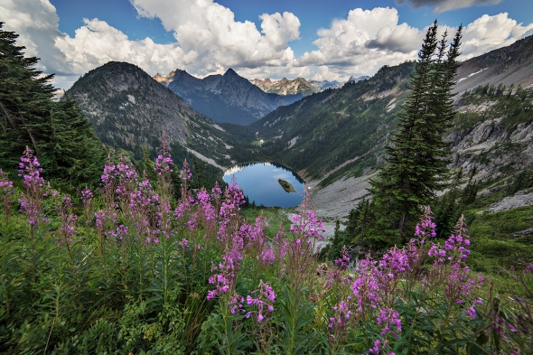 Lake Ann framed in Fireweed