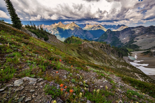 Maple Pass Trail: Switchbacks headed down