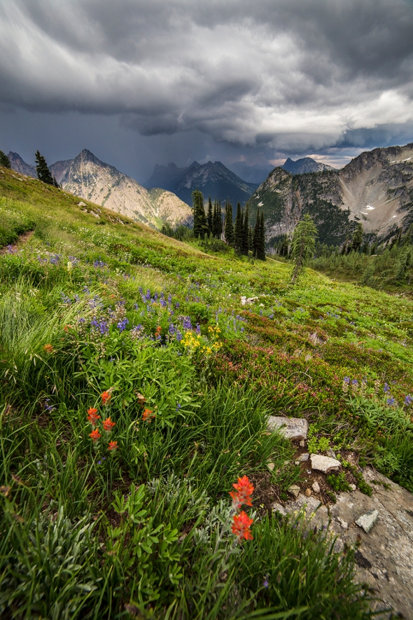 Storm Clouds along Maple Pass Trail