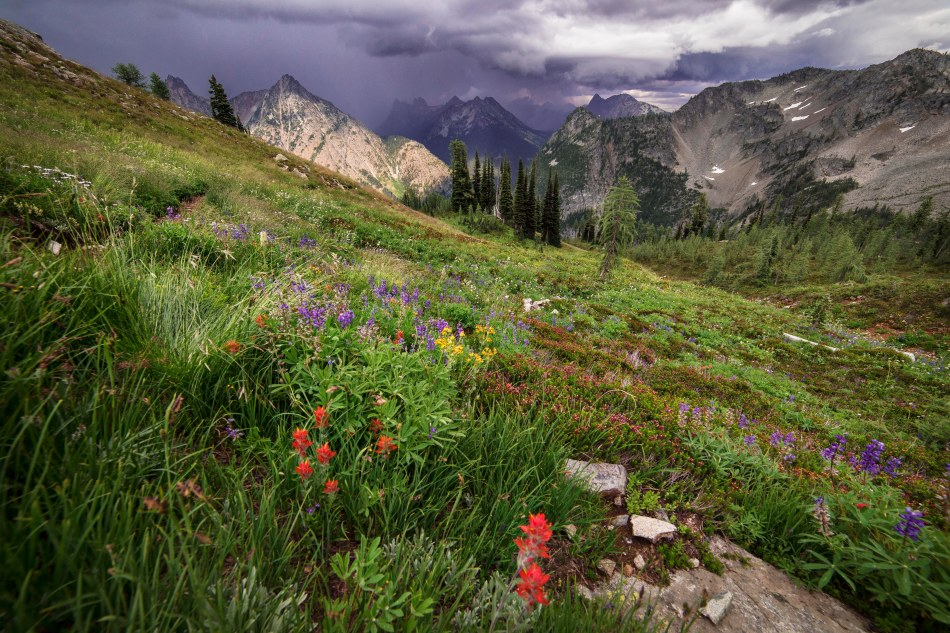 Stormy Skies along the Lake Ann - Maple Pass trail, North Cascades
