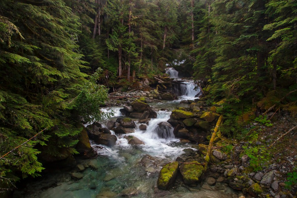Indian Creek Waterfall, North Cascades National Park