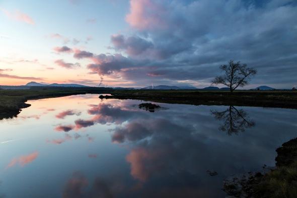 Padilla Bay, Skagit County, Washington