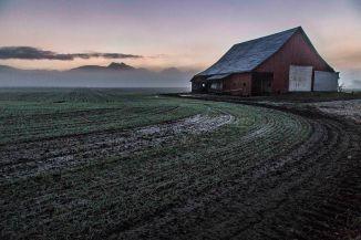 Skagit County Barn: Early Morning