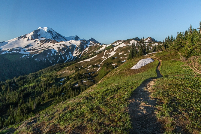 Mount Baker from the Skyline Divide Trail