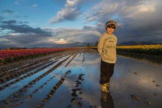 Skagit_Valley_Tulip_Festival 2015_2