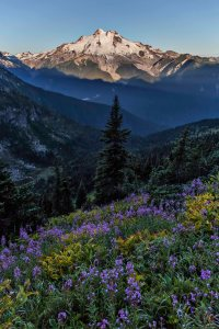 Glacier_Peak_Wilderness_1