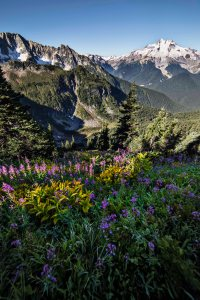 Glacier_Peak_Wilderness_2