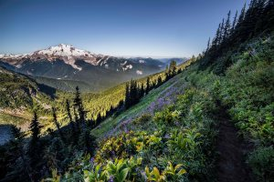 Glacier_Peak_Wilderness_3