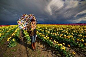 Tulip Festival Photo Tour