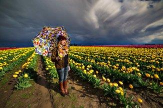 Skagit_Valley_Tulip_Festival 2015_55