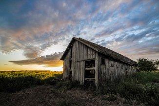 Skagit Valley Barn 8
