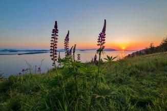 Samish_Overlook_Sunset