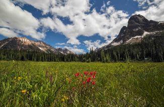 Liberty Bell from Washington Pass Meadows 12