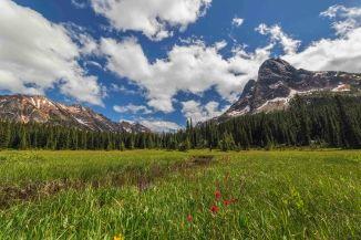Liberty Bell from Washington Pass Meadows 14