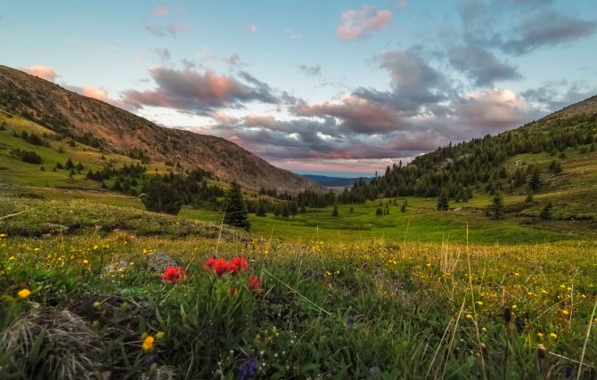 Sunny Pass, Pasayten Wilderness