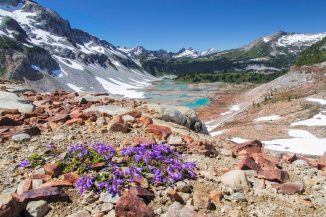 upper-lyman-lake-basin-1