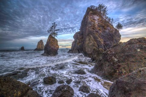 point-of-the-arches-olympic-national-park