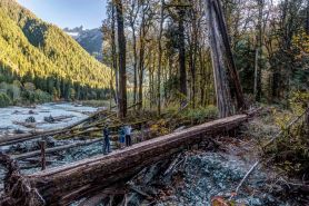 Baker River Trail footbridge