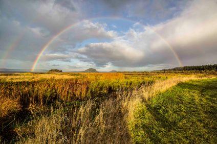 Double Rainbow, Fir Island