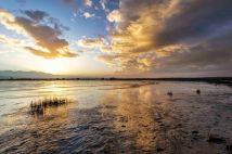 Fir Island Sunrise 5