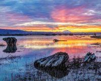 Sunrise at Fir Island, Skagit Valley