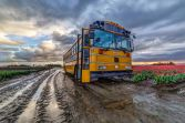 Bus and Mud 1