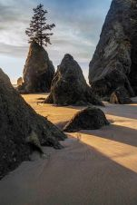 Sunset at Point of the Arches, Olympic National Park 16