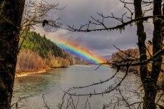Skagit-River-Rainbow