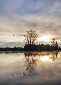 Skagit River Sunday Sunrise March 2019