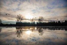 Skagit River Sunrise March 2019