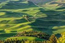 Palouse-from-Steptoe-Butte
