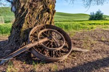 Palouse-wagon-wheel