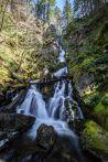 Rodney Falls, Upper