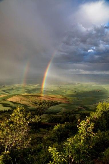 Double-Rainbow-over-the-Palouse