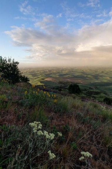 Sunset-after-a-storm-Palouse